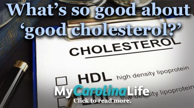 Whats so good about good cholesterol